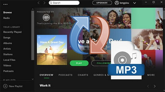 Converta Spotify para MP3